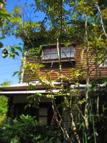 2014-kamakura-2.jpg